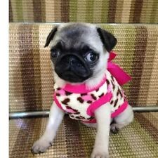 Tamaño XS Chihuahua (Pug Cachorro) acogedor Fleece Leopardo Top & Pink Bow Mascota Perro Ropa