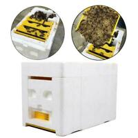 Hive Plastic Box Harvest Beehive Pollination Beekeeping Mating Bee-King-Foa L0C0