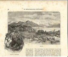 Stampa antica AJACCIO Grotta di NAPOLEONE Corsica 1892 Ancien Gravure Old Print