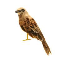 Artificial Gray Sparrow Bird Realistic Taxidermy Home Garden Decor 14cm #1