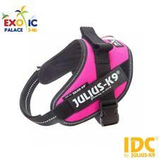 Pettorina Julius-k9 IDC Power Rosa scuro Mini