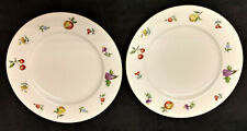 Two Eschenbach Bavaria Germany Baronet China Florence Pattern Salad Plates