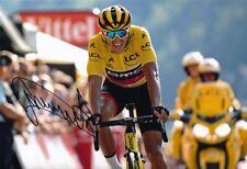 Greg Van Avermaet Signed 8X12 inches 2018 Tour De France BMC Yellow Jersey Photo