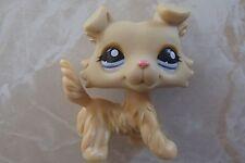 Littlest Pet Shop RARE Collie Dog Puppy #1194 Yellow Blue Pink Golden Purple LPS