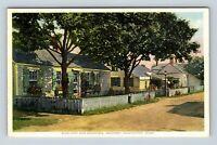 Nantucket MA, Cottages Flowers Scenic Street, Vintage Massachusetts Postcard A56