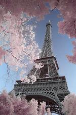 Paris Poster Eiffelturm David Clapp