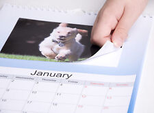 """MAKE YOUR OWN 2019 PERSONALISED A4 CALENDAR WITH YOUR 6X4"""" PHOTO PRINTS"""