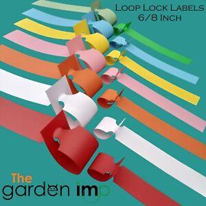 Loop Lock Plant Labels - Professional Self Tie Garden Nursery ID Tags 6/8 Inch