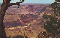 Chrome Postcard A560 Grand Canyon National Park Arizona AZ Petley Colorado River