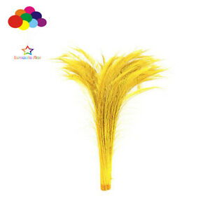 100 pcs Peacock sword Bleach gold Dyed feathers 10-32 inch/25-80cm wedding decor