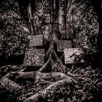 Kamasi Washington - Harmony of Difference [CD]