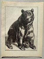 GRAVURE Art Deco OURS Bear signée PAUL JOUVE
