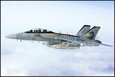 USN EA-18G Growler (F-18 Hornet) VAQ-130 Zappers 2012 8x12 Photo