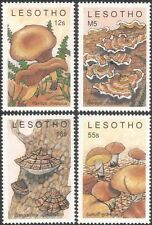 Lesotho 1989 Fungi/Mushrooms/Nature/Plants 4v set (s2613)