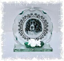 More details for photo of black & white springer spaniel round cut glass plaque