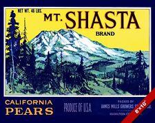 VINTAGE MT SHASTA CALIFORNIA PEARS FRUIT POSTER FOOD ART REAL CANVAS PRINT