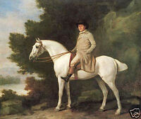 "Art Oil painting Gentleman horseman on white horse in landscape canvas 24""x36"""