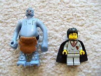 LEGO Harry Potter - Rare Minifigs from  4712 - Troll & Harry Potter