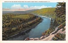 Sparrow Bush NY~Delaware River From Hawks Nest Road~Lady~Observation Point~1920s
