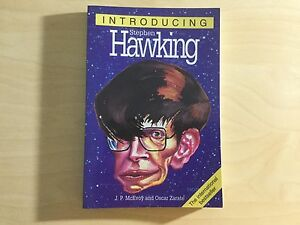 Introducing Stephen Hawking by J.P. McEvoy (Paperback, 1999)