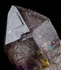 4cm AMETHYST QUARTZ Crystal with Record Keeper & Rainbow from Karur, India 7411
