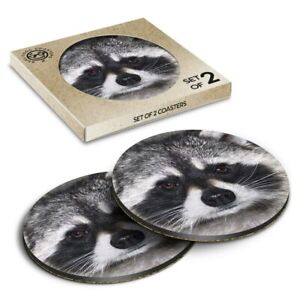 2 x Boxed Round Coasters - Cute Raccoon Face  #14190