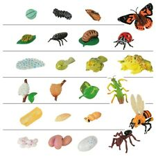 Insect Lore Products Life Cycle Figurines - 24 Pieces