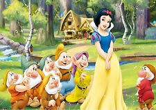 SNOW WHITE A4 GLOSSY POSTER