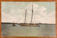 CHESTERTOWN MARYLAND THE CHESTER RIVER SAIL BOATS POSTCARD C17
