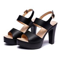 Women Super High Heels Platform Wedge Block Heel Sandals Open Toe Strap Shoes