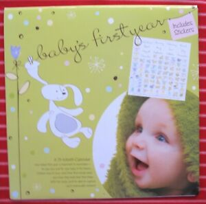 Day Springs 13 Month Memory Calendar BABY'S FIRST YEAR milestone stickers RECORD