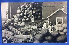 1914 Antique FORT ATKINSON IOWA Barn EXAGGERATED Corn Onion POSTCARD
