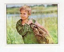 figurina - PANINI PINOCCHIO 1972 - numero 265
