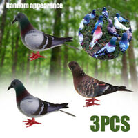 3Pcs Ornament Decor Feathered Birds for Artificial Pigeon Doves Simulation
