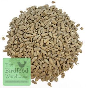 Sunflower Hearts 20kg - Premium Bakery Grade - Wild Bird Food, Dehulled Seeds