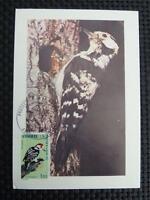 ANDORRA MK 1973 FAUNA VÖGEL BIRDS MAXIMUMKARTE CARTE MAXIMUM CARD MC CM c825