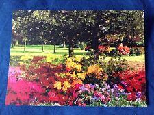 Azaleas in full bloom - Lewisham Park Art Card