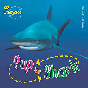Pup to Shark Lifecycles Children's Education Book age 4-8 Science