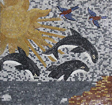 Jumping Show Black Dolphins Tile Stones Marble Mosaic AN245