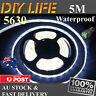 Waterproof 5M 12V Cool White 5630 SMD 300 LED Strips Led Strip Lights car boat
