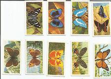 LOT BUTTERFLIES ; Brooke Bond Tea Cards - original cards - 9 various