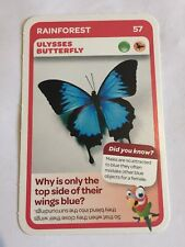 Taronga Zoo Woolworths Aussie Animal Card #57 Ulysses Butterfly