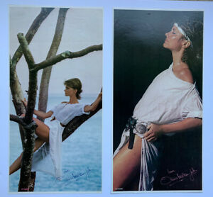 Original PAIR of 1981 Olivia Newton John Physical Promo Posters Record Store