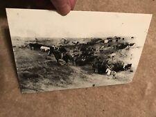 9 x 6    ANTIQUE PHOTOGRAPH   Circa 1895-1898 2 miles south of  Dellvale, Kansas