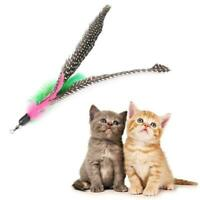 Pet Cat Kitten Toy Teaser Wand Stick Refill Feather Replacement F2T1 With L4O1