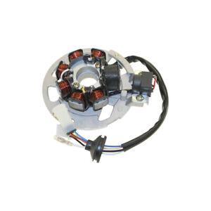 Lichtmaschine, Stator, Anker für Malaguti F15 50 DD LC Firefox 4400000