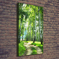 Leinwand-Bild Kunstdruck Hochformat 50x125 Bilder Birkenwald