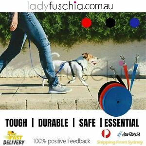 Assorted Length Long Dog Pet Puppy Training Tracking Obedience Recall Lead Leash