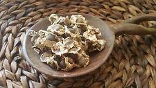 150 Organic  Fresh Moringa Oleifera   Seeds