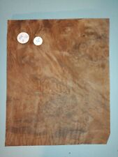 CONSECUTIVE SHEETS OF AMERICAN BURR WALNUT VENEER 20 X 25 cm AM#38 DASHBOARD
